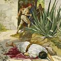 05/06 Chúng bắt cậu con trai giết đi và quăng xác ra vườn nho