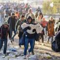 Toà Thánh đề cao phần đóng góp tích cực của người di cư