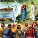 02/06 Con hãy chăn dắt các chiên mẹ và chiên con của Thầy