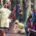 08/3 Thanh tẩy đền thờ Giêrusalem