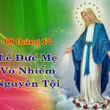 Ngày 08/12 Lễ Đức Mẹ Vô Nhiễm Nguyên Tội