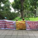 Tiếng kêu của giáo dân Cồn Dầu giữa trưa hè đổ lửa