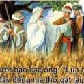 27/6 Xin Ngài chỉ nói một lời