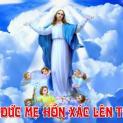 Hình ảnh đức Mẹ Maria lên trời