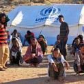 82 triệu người tị nạn trên thế giới